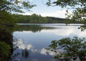Region Mille étangs